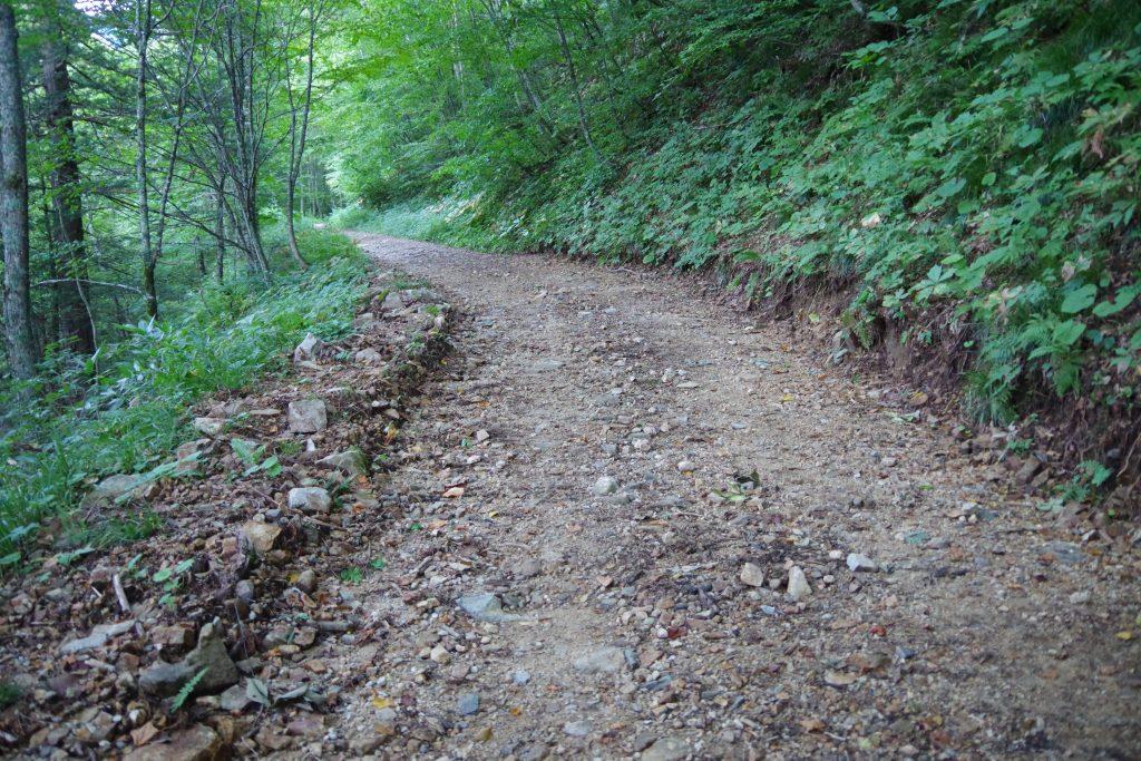 槍ヶ岳登山道の林道
