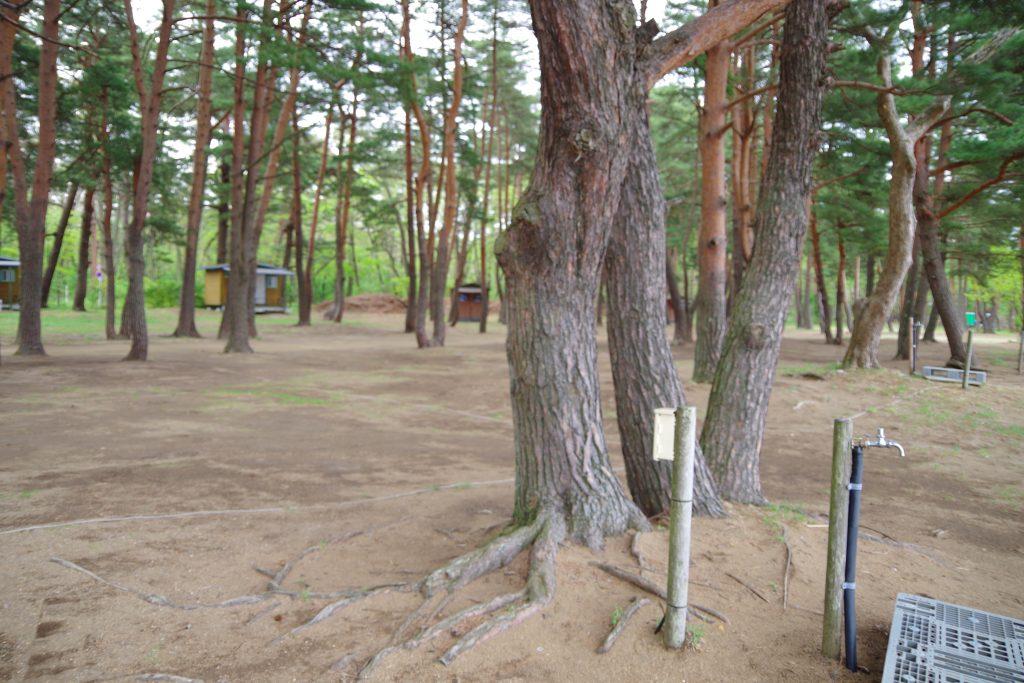 天神浜オートキャンプ場のACサイト