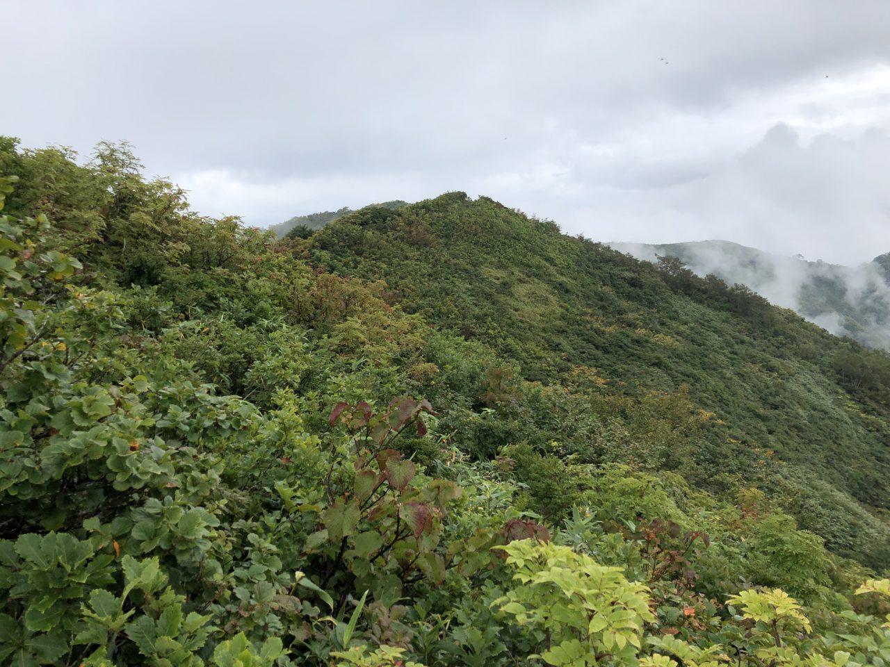 飯森山からみる鉢伏山